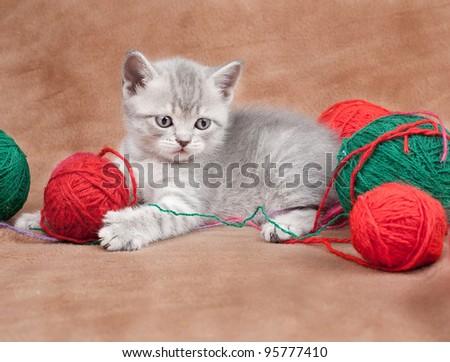 Lovely kitten with balls of threads
