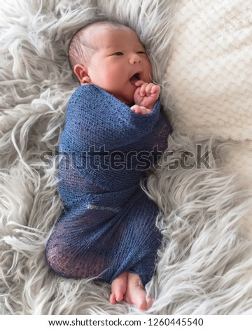 Lovely newborn Asian baby boy swaddled in purple knitted mohair wrap lying on rug long hair blanket. Beautiful portrait of 6 day old infant at home