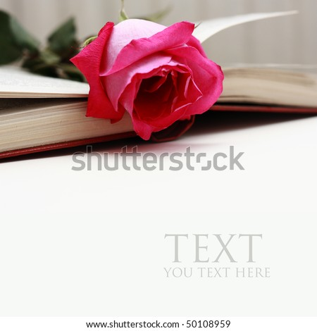 Lovely red rose  on a classic note book