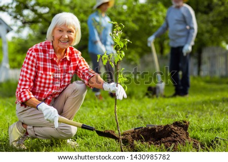 Lovely retired woman. Lovely retired woman wearing squared shirt smiling while planting tree near friends