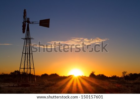 Lovely sunset in Kalahari with windmill grass and bright colours #150157601