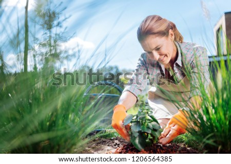Lover of horticulture. Great lover of horticulture feeling simply amazing while planting flowers outside her detached house #1206564385