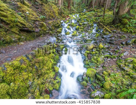 lover's lane fall,water fall before  to Sol duc fall in Olympic national park area,Washington,usa.