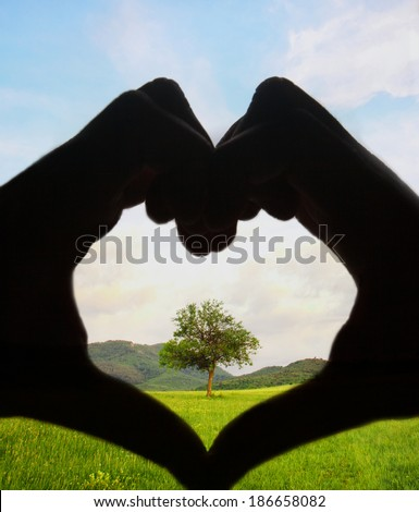 loving tree and save planet concept with human hand in shape of heart