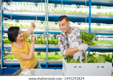 Loving wife. Loving wife making photo of her handsome husband holding lettuce while standing in greenhouse #1445292824
