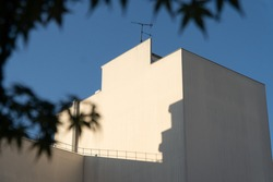 Low angle landscape view over the big white wall of a building with no window, sun light and shadow. Maple leaves in first plan and blue sky in background. Urban view in a Paris courtyard. France.