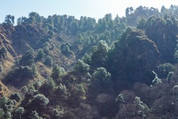 Low angle shot of beautiful mountain forests with sun rays filte