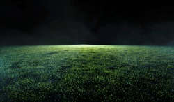 Low angle view across the neatly cut green grass of a soccer or sports field in shadowy evening light for use as a background image