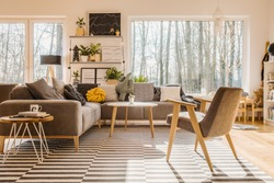 Low angle view of a scandinavian, sunlit living room interior with a gray armchair, sofa, and a big window. Real photo