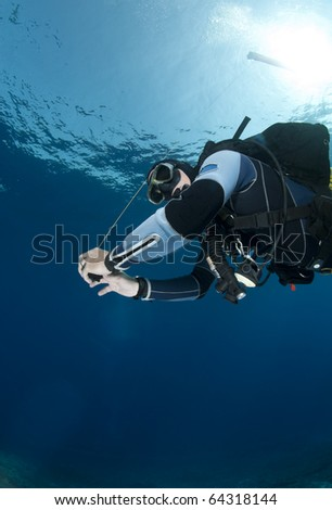 stock photo : Low-angle view of an adult male scuba diver holding a surface