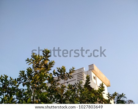 low angle view of built structure covered with tree leaves against clear sky #1027803649