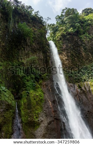 Low angle view of La Fortuna Waterfall in a forest, Alajuela Province, Costa Rica