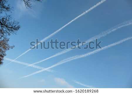 Low angle view of leafless tree crown in the top left corner and white trails or condensation trails criss-crossing  the blue sky. Planes and jets create contrails high in the thin cold air, Germany.