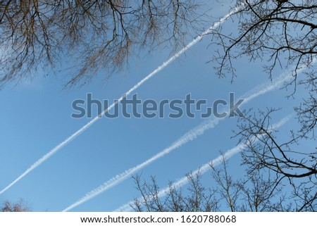 Low angle view of leafless tree crowns in  the corners,  white trails or condensation trails  and blue sky. Planes and jets create contrails high in the thin cold air, Germany.