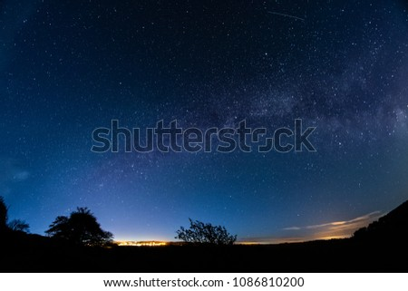 low angle view of silhouette trees against star field at night #1086810200