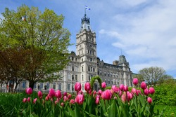 Low angle view of the empire style Parliament Building, home of Quebecs National Assembly with purple tulips in the foreground in the Parliament gardens