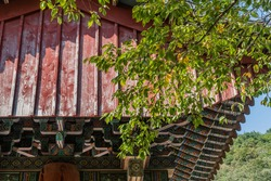 Low angle view side of oriental temple gate behind lush green leaves on tree branch.