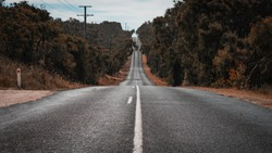 Low angled shot of long straight deserted road along great ocean road australia with forest land at either side