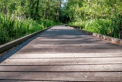 Low down view along the tree lined wooden board walk along the River Bure in the Norfolk village of Hoveton and Wroxham in the heart of the Norfolk Broads
