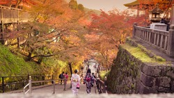 low light tone with backside of teen girl with japanese cloth(kimono) with foreground soft focus at kiyomizu temple japan