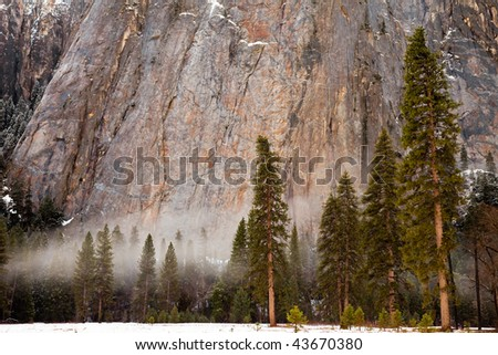 Low Lying Mist on a Winter Day in Yosemite National Park, California.