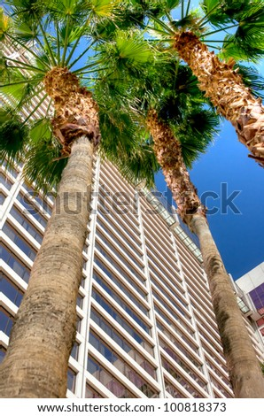 Low perspective view of the Flamingo Hotel tower in Las Vegas Nevada