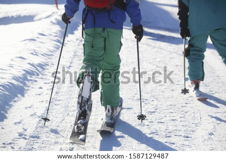 Low section of skiers cross country skiing