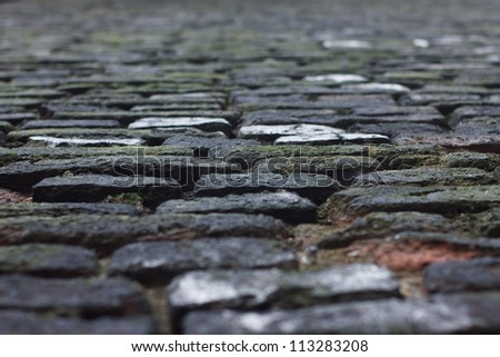 Low view of a old cobble street with some sharp focus and lots of blur.