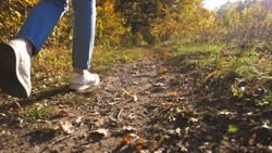 Low view of female feet in sneakers steps along path near forest. Legs of young woman goes among trail at early autumn. Girl walks at wild nature at sunny day. Close up Slow motion