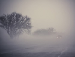 Low visibility on a foggy road