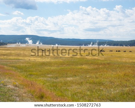 Lower Geyser Basin which has a much less concentrated set of geothermal features, including Fountain Paint Pots. Fountain Paint Pots are mud pots, that is, a hot spring that contains boiling mud #1508272763