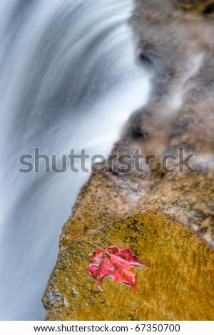 Lower Tews Falls  in hamilton ontario in the fall