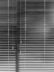 Lowered horizontal window blinds with three cords and tassels in the waiting room of a dental office on a sunny day, in black and white, for motifs of visibility and privacy, control, adjustment
