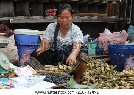 LUANG PRABANG, LAOS - AUGUST 15: A local hill tribe woman selling produce at the local market in Luang Prabang, Laos on the 15th August, 2014.