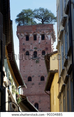 lucca tower - stock photo