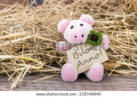 lucky pig with cloverleaf and card with italian text happy new yearhappy new year