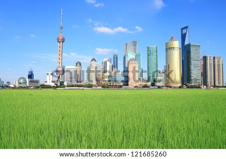 Lujiazui Finance&Trade Zone of Shanghai landmark skyline at field landscape of Rice farms