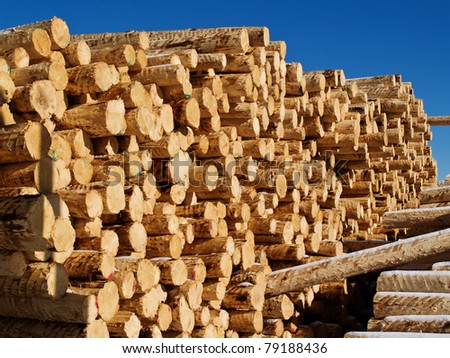 lumber in  factory yard