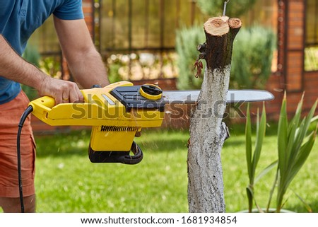 Lumberjack sawing a tree with a saw. A man cuts trees with a saw and professional tools. concern for nature. Spring garden.