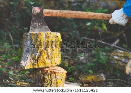 Lumberjack Splitting Wood And Cutting Firewood With Old Axe .
