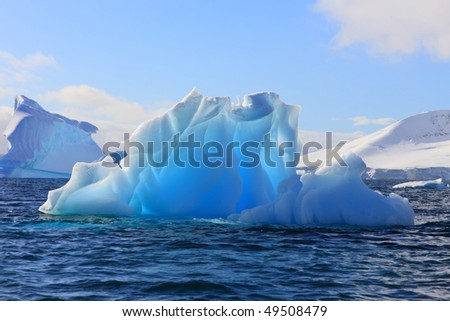 Luminescent iceberg in Antarctica with lovely blue colors.