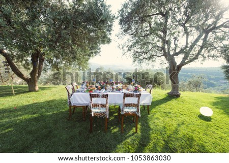 Shutterstock Lunch in the open air. Many dishes on the table. Design of a table in a marine style. Olive grove.