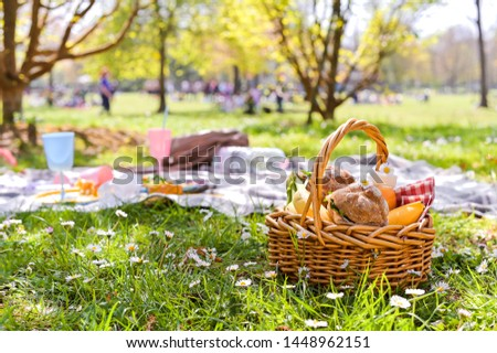 Lunch in the park on the green grass. Summer sunny day and picnic basket. Copy space