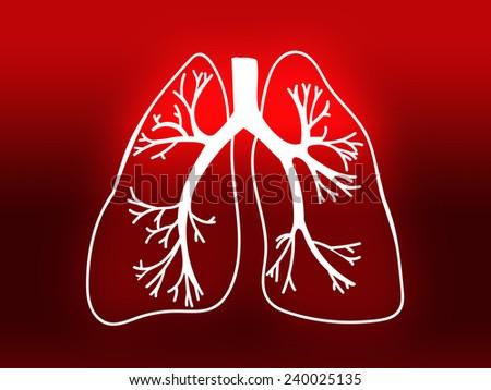 Lung Biology Organ Medicine Study Human red