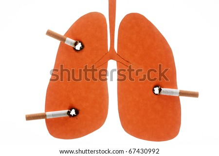 damaged lungs. stock photo : Lungs damaged by