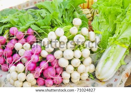 Luscious Harvest
