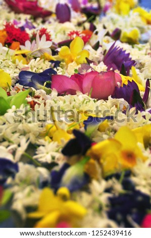 Lush abundance of multicolored flowers. Abstract background of composed heaps of beautiful fragrant flowers in abundance