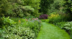 Lush green botanical garden - blooming spring flowers and lawn path.