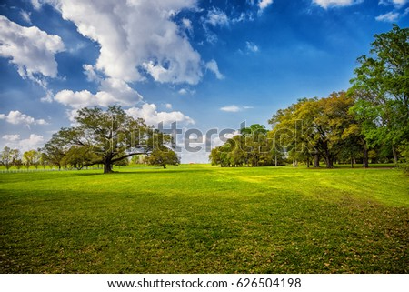 Lush green grass with blue sky, cloud combination. Brigh sunny day #626504198