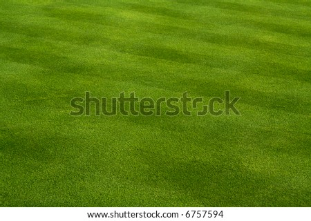 Lawn Mowing Pattern - Do It Now Landscaping - Home